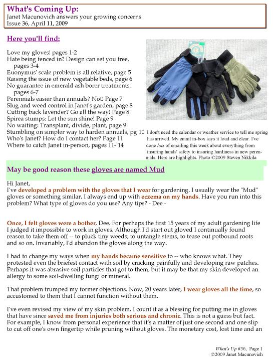 GardenAtoZ Whats Up 36 Gloves design scale Garden A to Z