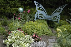 ButterflyBench8296.jpg