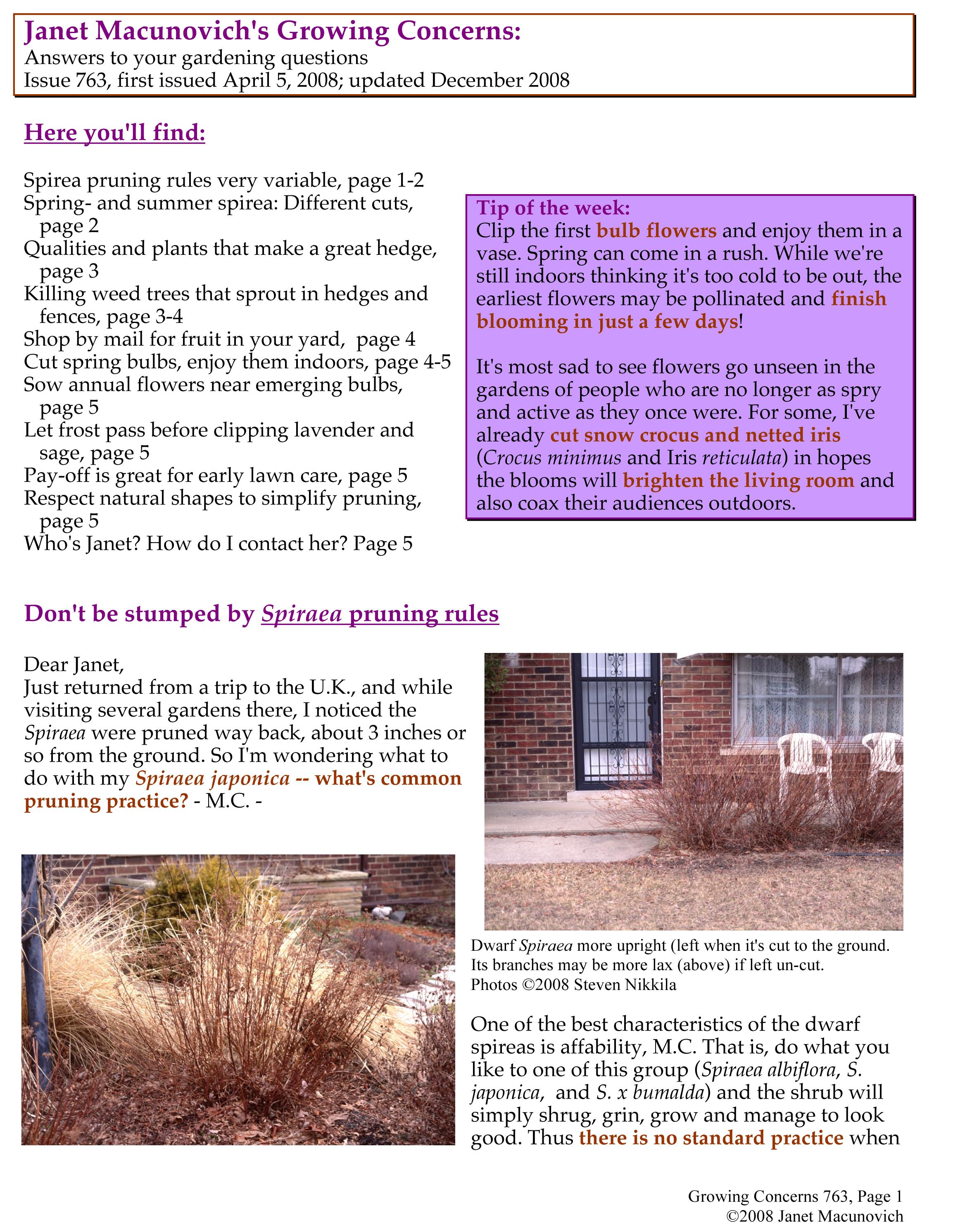 GardenAtoZ Grow 763 Prune spirea kill weed trees Garden A to Z